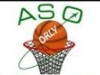 logo section basket